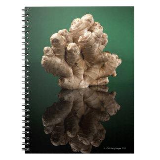 Ginger Notebooks