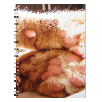 Ginger Paws Notebook