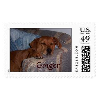 Ginger Postage