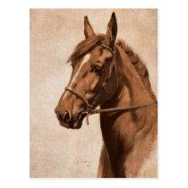 Ginger Sorrel Horse Black Beauty book Kemp-Welch Postcard