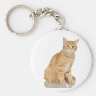 Ginger Tabby Basic Round Button Keychain