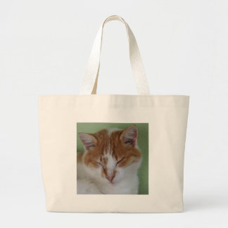 Ginger Tabby Cat Having A Cat Nap Canvas Bags