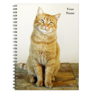 Ginger Tabby Cat Notebook