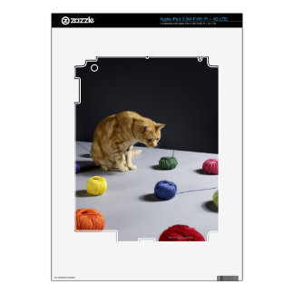 Ginger tabby cat sitting on table iPad 3 decal