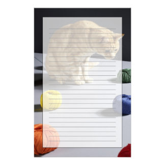 Ginger tabby cat sitting on table stationery