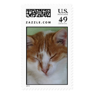 Ginger Tabby Having A Cat Nap Postage Stamp