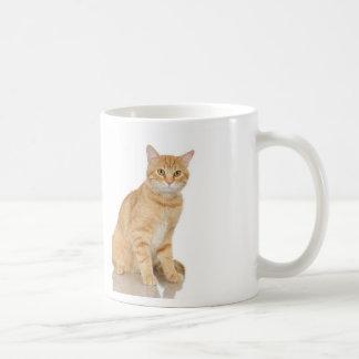 Ginger Tabby Coffee Mug