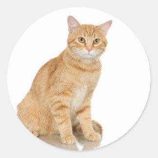 Ginger Tabby Round Sticker