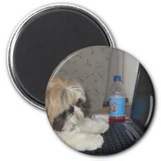 Ginger the Dog Refrigerator Magnet