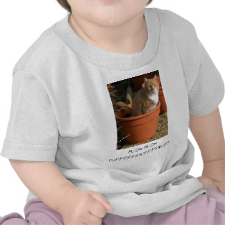Ginger Tom Cat Infant's Clothing T Shirts