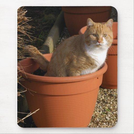 Ginger Tom Cat Mousepad