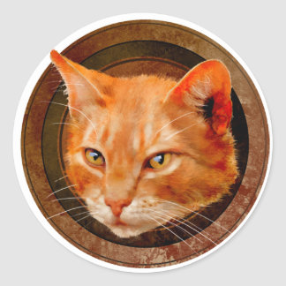 Ginger tom stickers