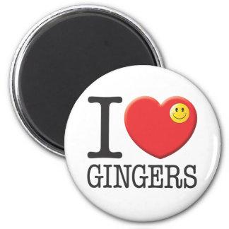 Gingers Fridge Magnet