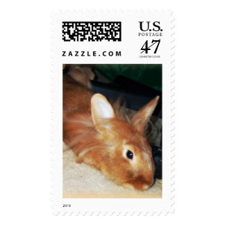 Gingers Rock! Disapproving Bunny Rabbit stamps