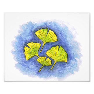 Gingko Illustration Photo Print
