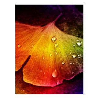 Gingko leaf multicolored by Tutti Postcard