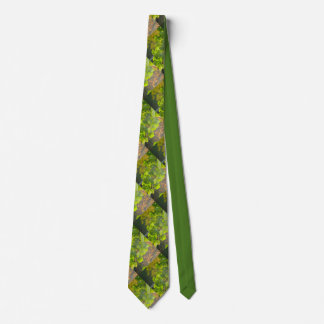 Gingko leaves in autumn sun tie