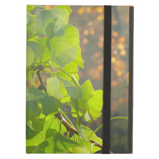 Gingko of leaves in autumn sun iPad air case