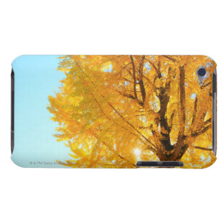 Gingko Tree, Nagano Prefecture, Japan iPod Touch Cover