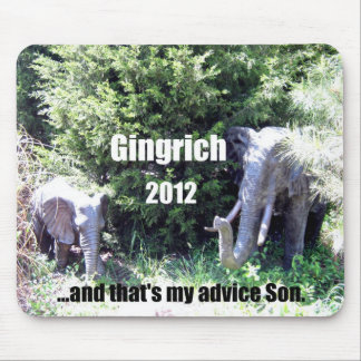 Gingrich 2012 mouse pad