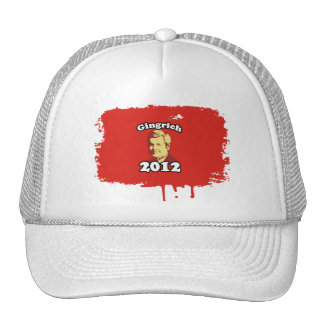 Gingrich 2012 Picture Hats
