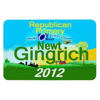 Gingrich OHIO Flexible Magnets