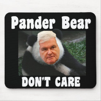 Gingrich Pander-Bear DON T CARE mousepad