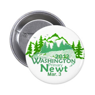 Gingrich Washington Button