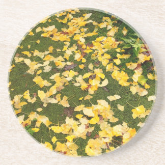 Ginkgo biloba leaves drink coaster