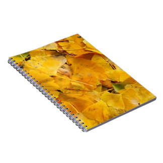 Ginkgo Biloba leaves Spiral Notebook