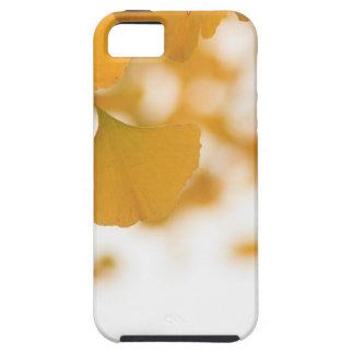 Ginkgo iPhone 5 Cárcasa