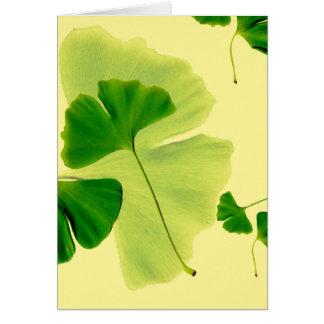 Ginkgo Leaves Card