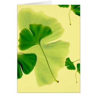 Ginkgo Leaves Greeting Card