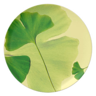 Ginkgo Leaves Party Plate