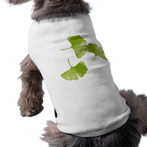 Ginkgo Leaves Pet Clothing