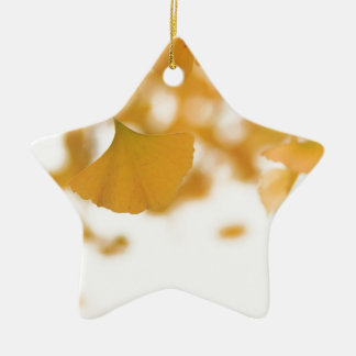 Ginkgo Double-Sided Star Ceramic Christmas Ornament