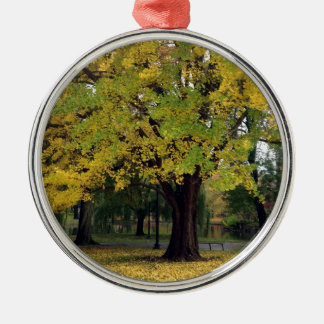 Ginkgo Tree in the fall Metal Ornament