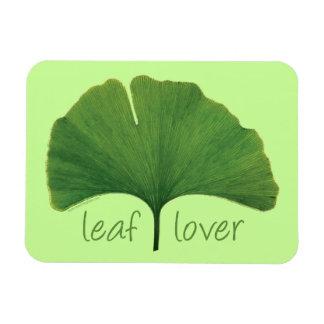 Ginkgo Tree Leaf Rectangle Magnets