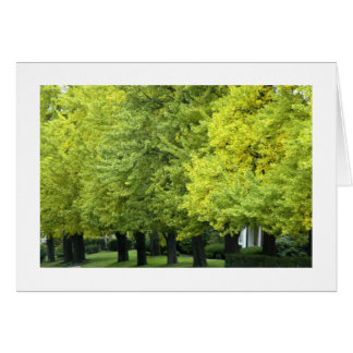 Ginkgo trees near the entrace to Highland Park Stationery Note Card