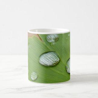 Ginkoblatt con gotas de lluvia taza