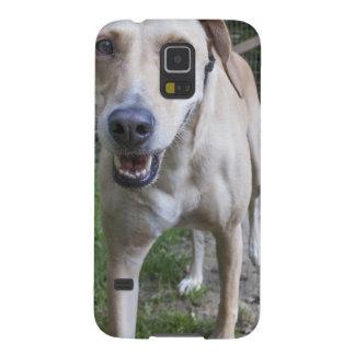 Ginny Fundas Para Galaxy S5