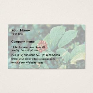 Ginseng (americano) tarjeta de negocios