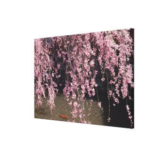 Gion, Kyoto Prefecture, Japan Canvas Print