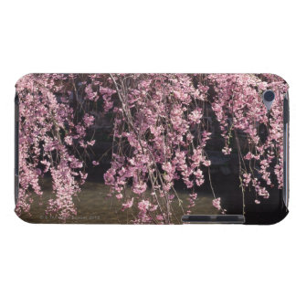 Gion, Kyoto Prefecture, Japan Barely There iPod Case