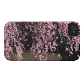 Gion, Kyoto Prefecture, Japan iPhone 4 Case-Mate Case