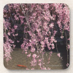 Gion, Kyoto Prefecture, Japan Drink Coasters