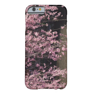 Gion, prefectura de Kyoto, Japón Funda Para iPhone 6 Barely There