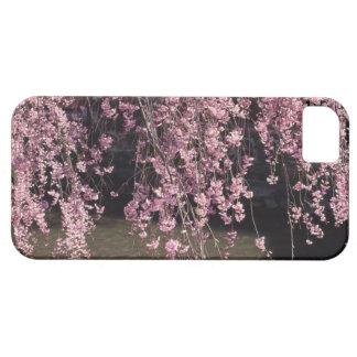 Gion, prefectura de Kyoto, Japón iPhone 5 Carcasa