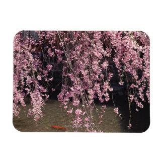 Gion, prefectura de Kyoto, Japón Iman Rectangular