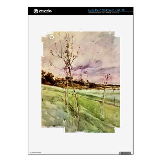 Giovanni Boldini - After the storm Skins For iPad 3